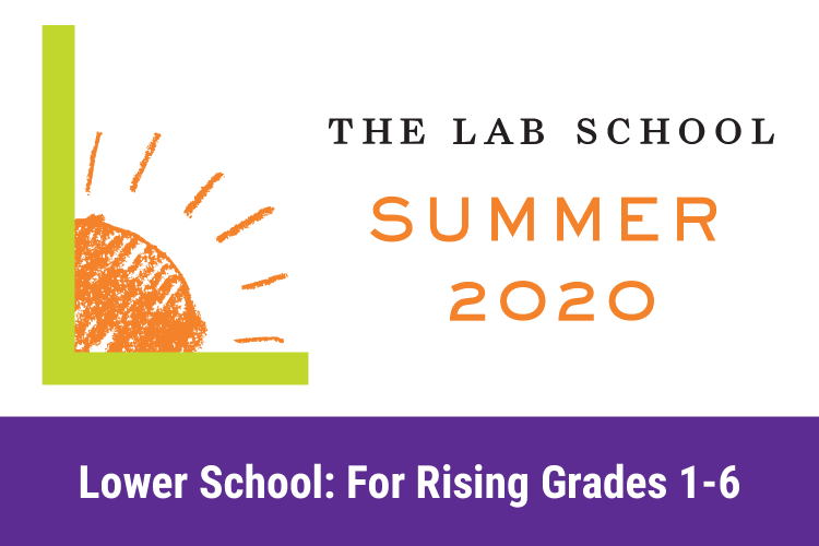 Lab Logo with shining sun and summer 2020 text