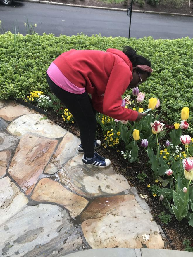 Student outside leans over to smell blooming flower